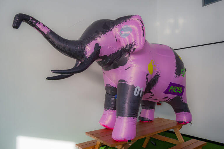 Inflatable Elephant For Use By A Musician